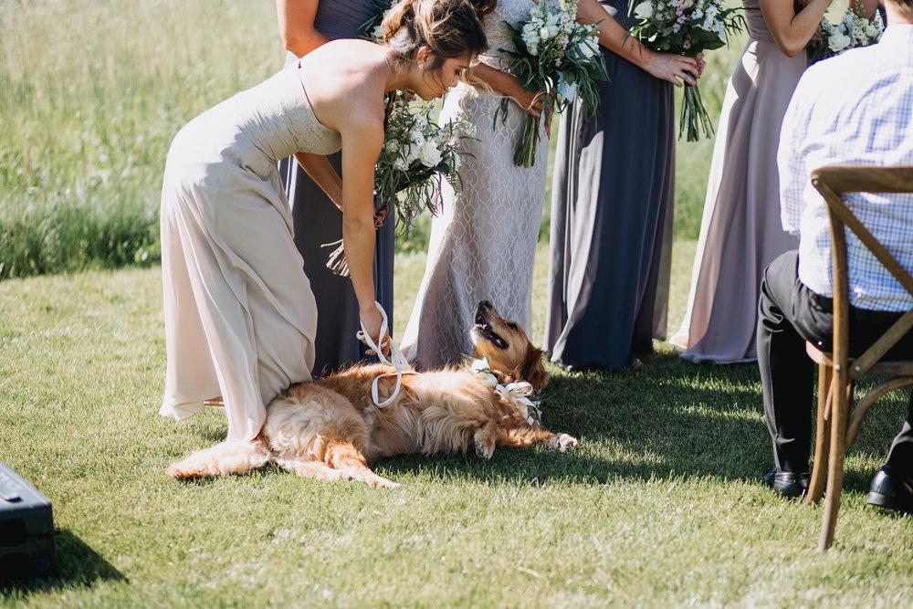 Nacho-Caitlin-Wedding-240.jpg