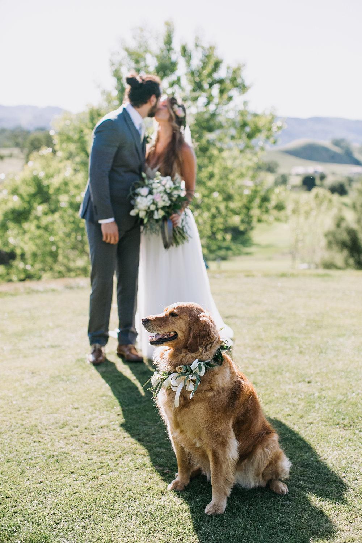 Nacho-Caitlin-Wedding-313.jpg