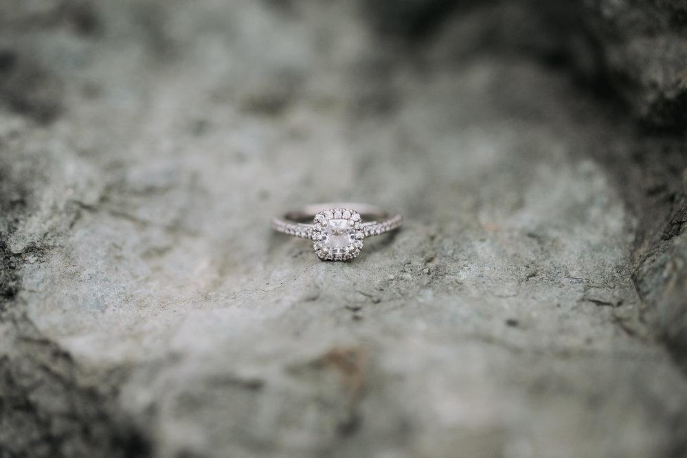 Mason-Amira-Engagement-172.jpg