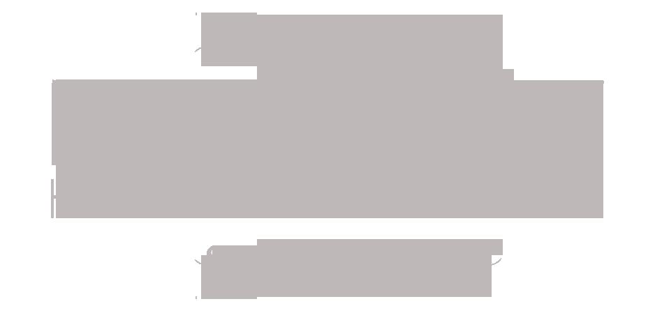 Mahogany Hair Revolution Salon Logo