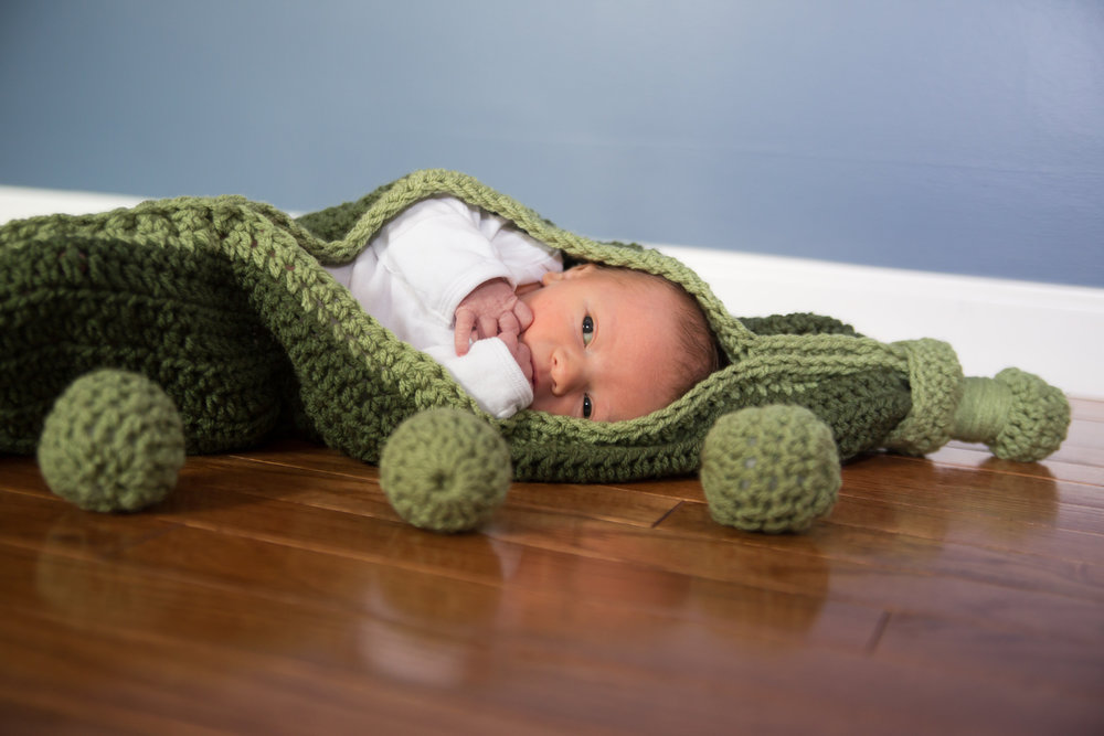 As cute as a Pea in a Pod | Prop by Dripps Knits | Click the image to see her Facebook page