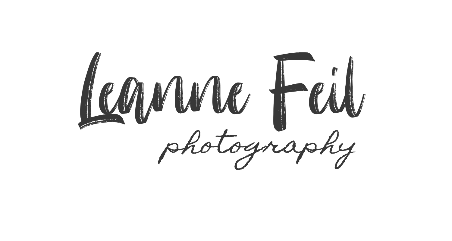 Pittsburgh Photographer | Leanne Feil Photography