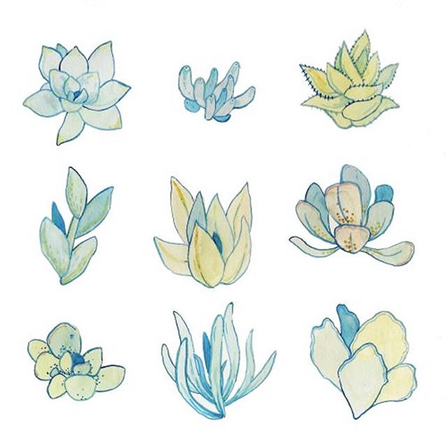 Have you seen our brand new succulent garden yet? Come check say hello to our new smallest members of the Shagg family! 🌿🌿🌿⠀ ⠀ Image via:⠀ http://mcmintea.tumblr.com/post/54546735323/another-succulent-watercolor-sketch-so-much-fun ⠀ -⠀ -⠀ -⠀ #loveyourself #summer #booktoday #love #toronto #hair #torontosalon #salon #yorkville #yorkvilletoronto #yorkvillesalon #yorkvillevillage #yorkvillehair #sun #beach #summerbreak #summerhair #succulents ⠀ #vogue #seconddayhair  #glamour #style #highfashion #fashion #hairandfashionaddict #torontohairstylist #torontohair #green