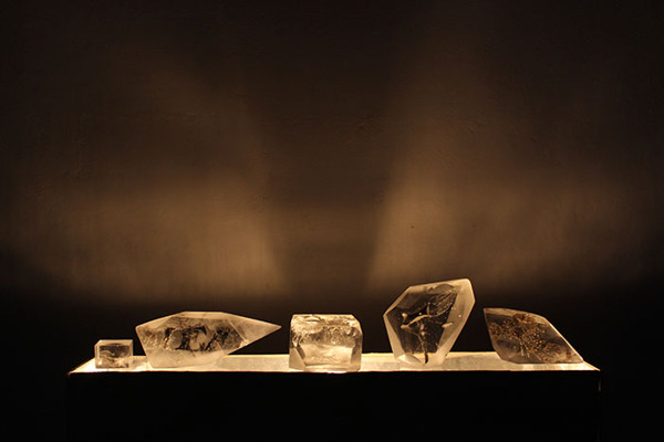 Glass Fossils