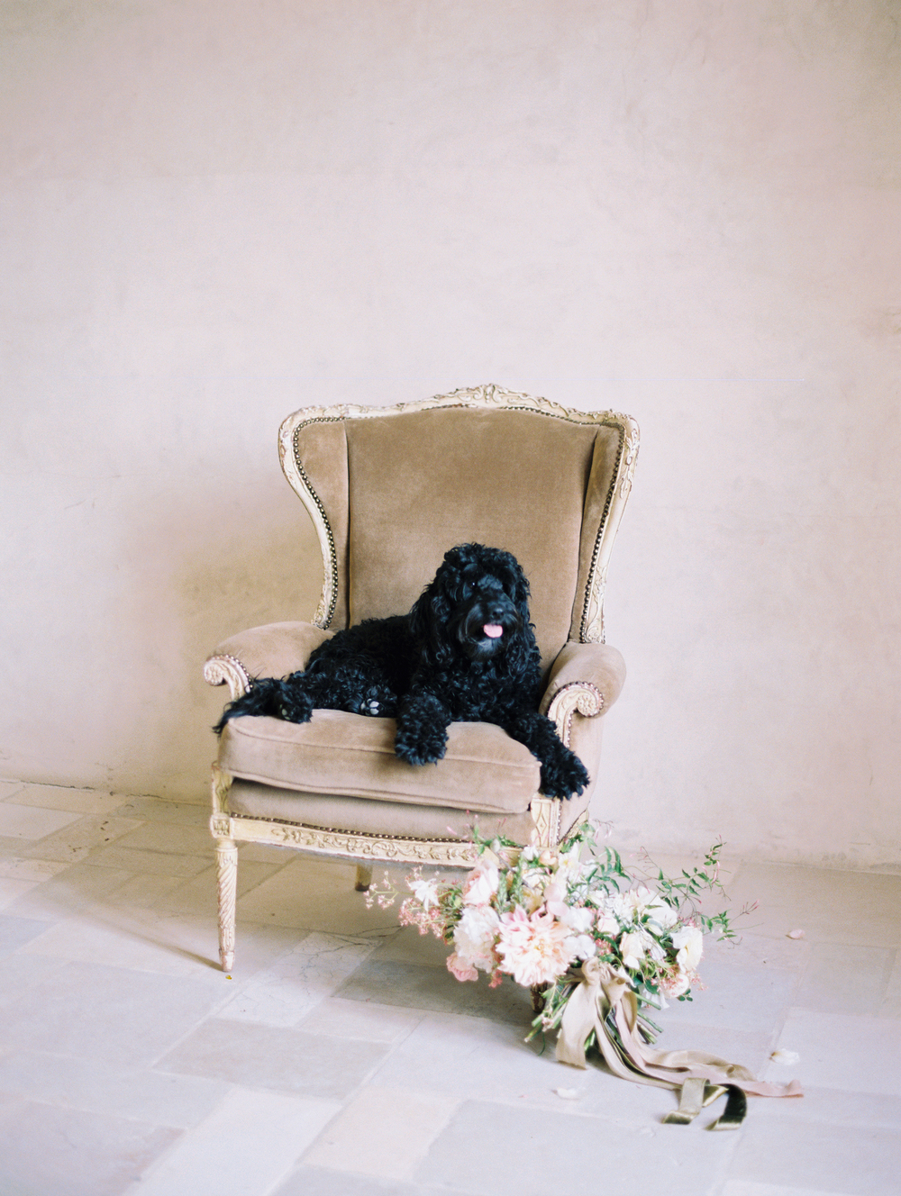 sunstone-villa-wedding-inspiration-carolly-santa-ynez-black-poodles.jpg