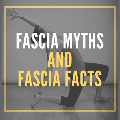 Massage Therapy Myths (Myths, Half Truths and False Claims