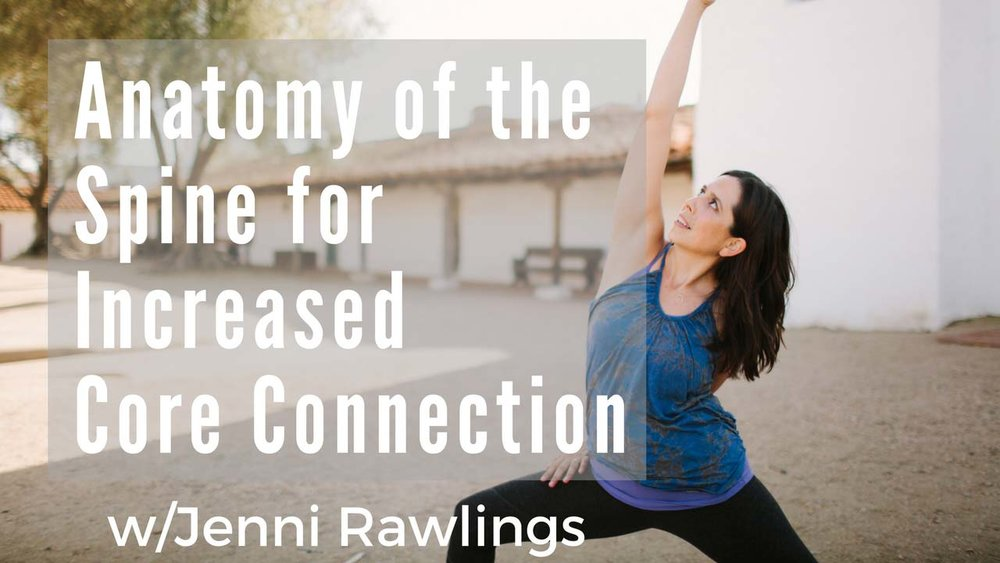 Yoga Anatomy of the Spine for Increased Core Connection