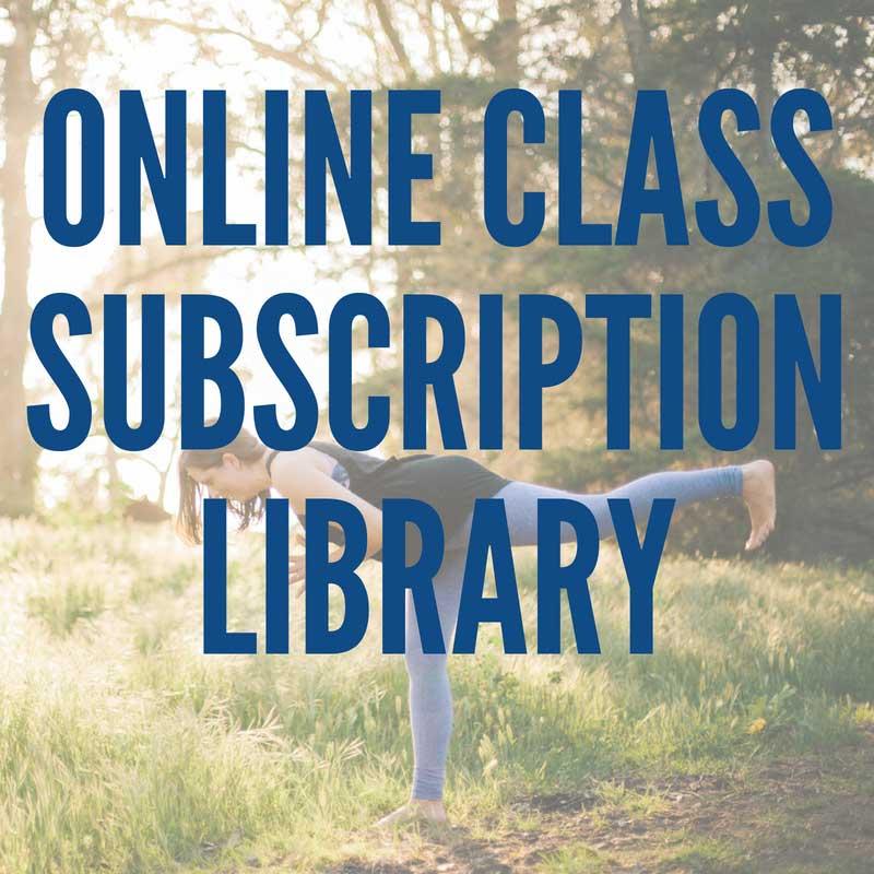 online-class-library.jpg