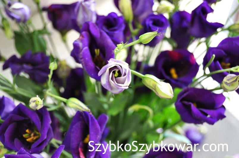 DSC_0291a copy.jpg