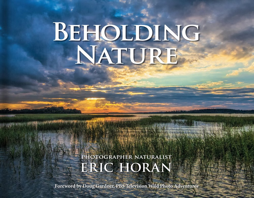 FRONT COVER-SM-Beholding-Nature-Eric-Horan.jpg