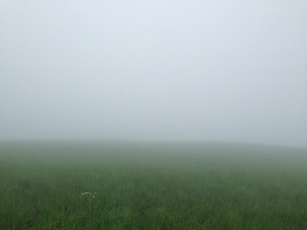 Mist on the escarpment of the Littleberg.