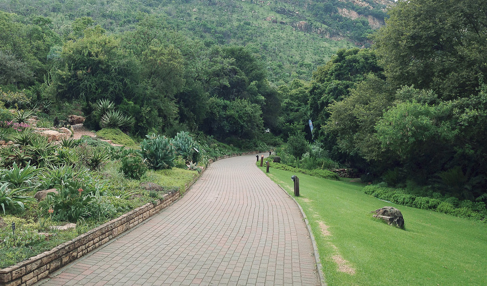 Network of paved footpaths running through the Botanical Gardens.