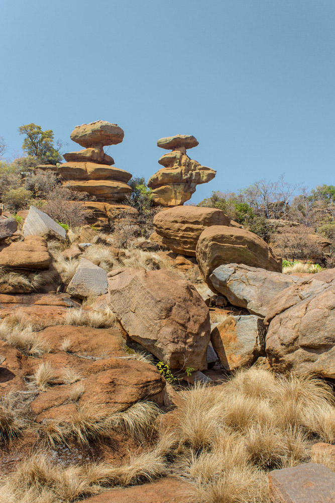 The Twins – Two spires made from Quartzite. The rock in this area used to be sedimentary sandstone, deposited layer by layer over 2 billion years ago and due to immense pressure changed into Quartzite – a common metamorphic rock in the Magaliesberg.
