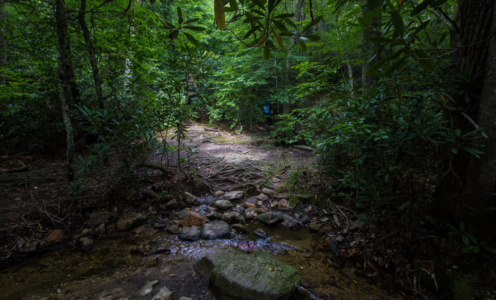 A stream shortly before Gooch Shelter. Water in Noarth America has to be treated or filtered to prevent Giardia and similar diseases. Click to enlarge