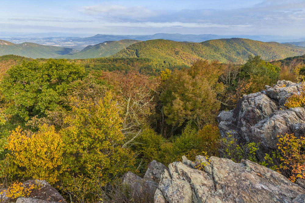 The trail though Shenandoah National Park often crosses exposed rocky balds that overlook the surrounding forest.  Click to enlarge
