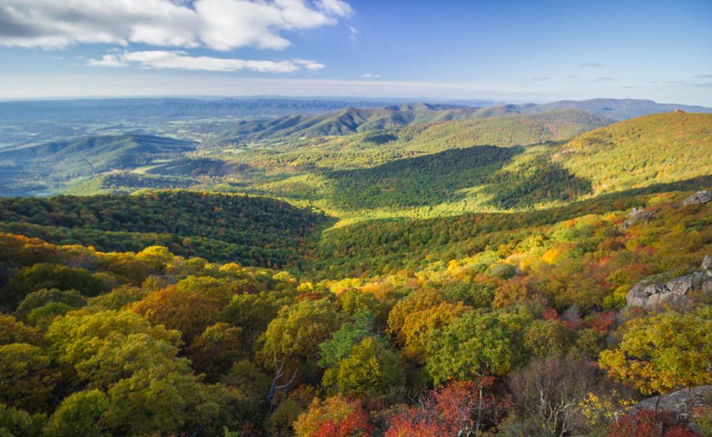 Shenandoah National Park in peak Autumn foliage.
