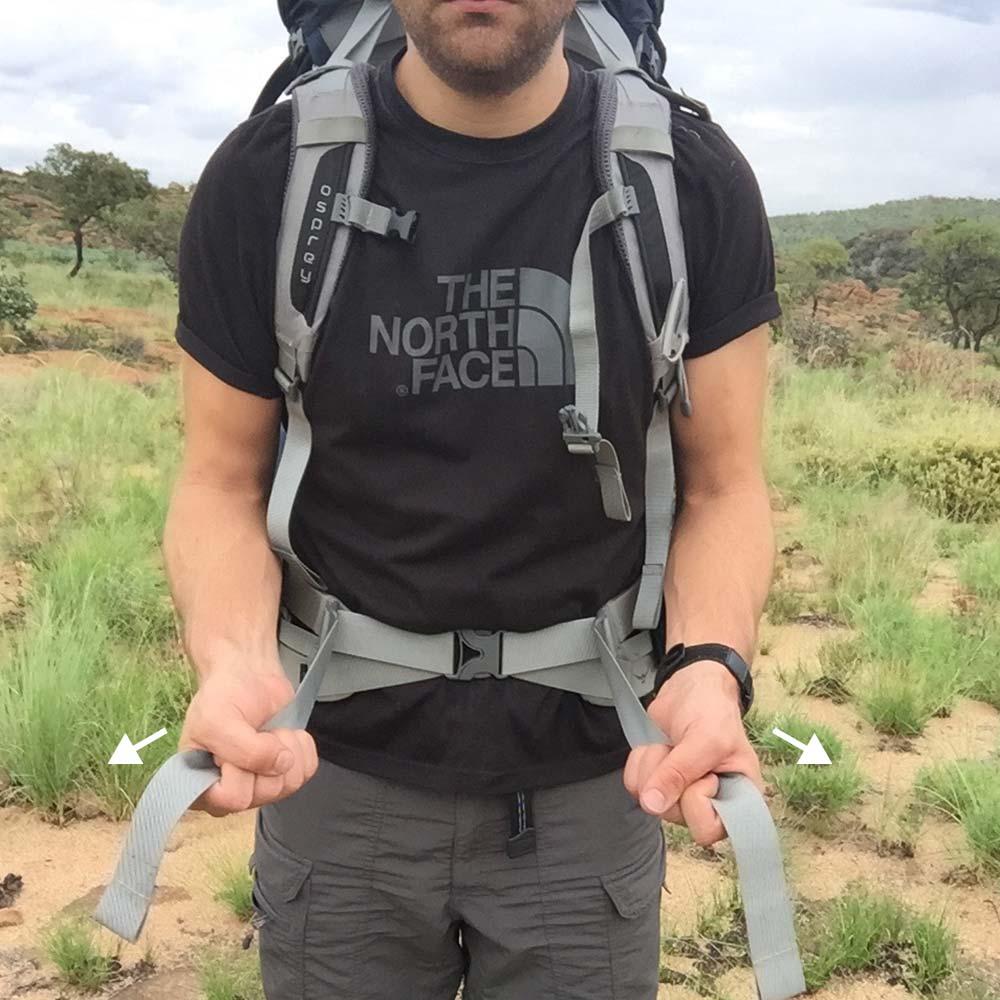 2. Hip belt