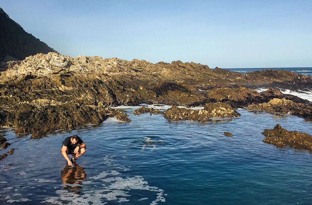 The rock pools are filled with sea creatures. Giant anemones, sea stars, urchins, fish and crustaceans. Pack a pair of diving goggles and explore!  Click image to expand.