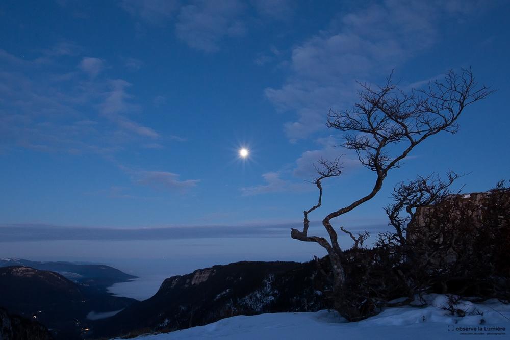 La lune et le Biscornu