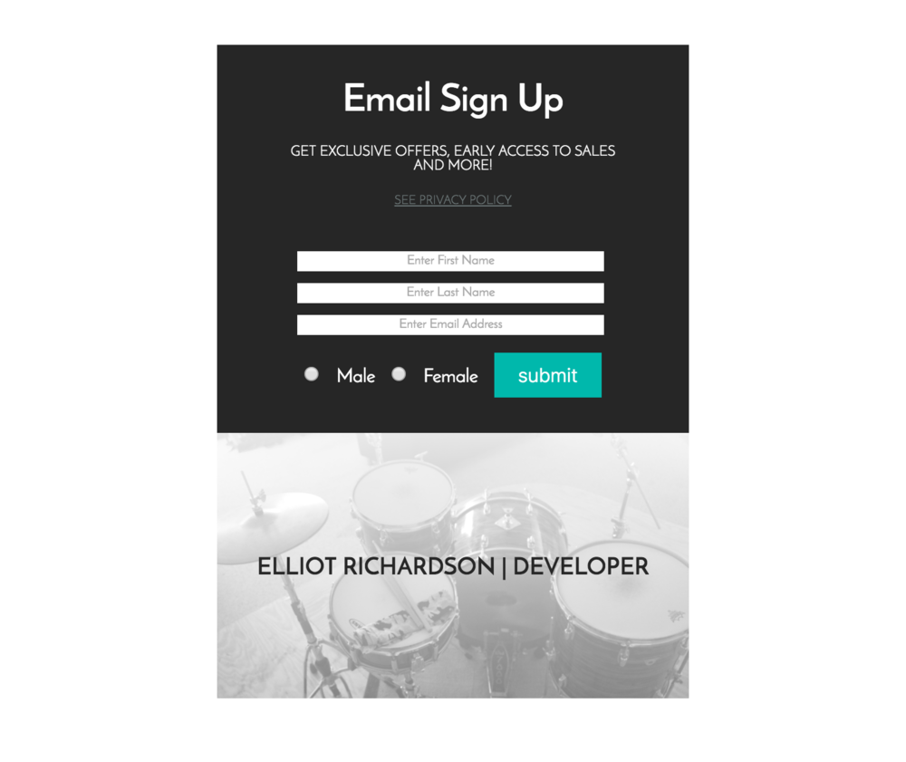 Functional Email Sign Up
