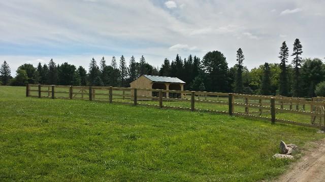 Run-In Horse Barn