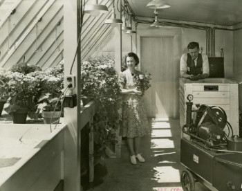Harrison & Foilhoux, Electrified Farm greenhouse (New York World's Fair 1939-40 Records, Manuscripts and Archives Division, New York Public Library, Astor, Lenox, and Tilden Foundations).