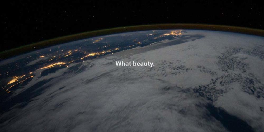 What a Beauty.jpg
