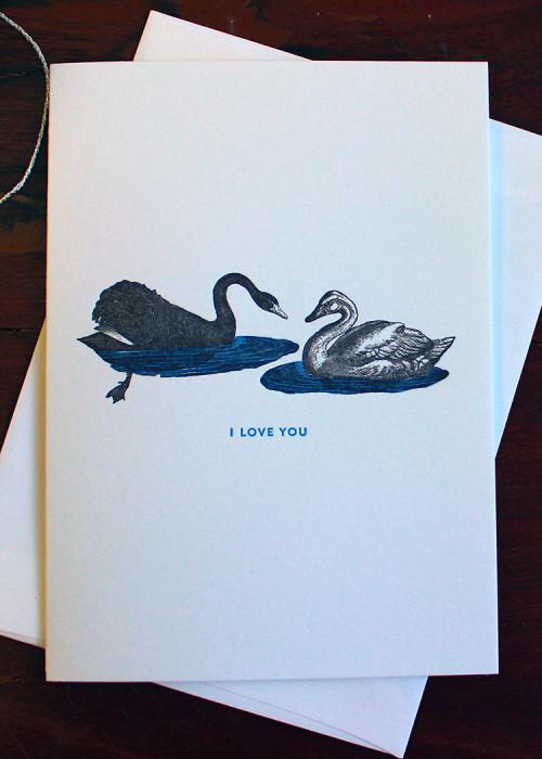 Swans_5x7_150_dpi