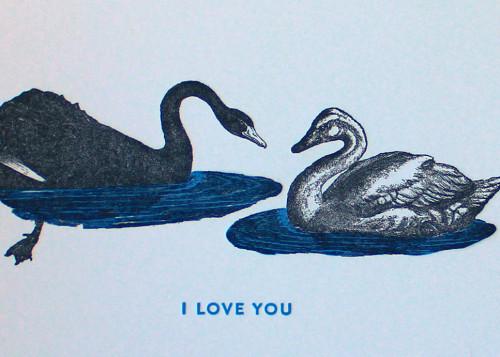 Swans_5x7_detail