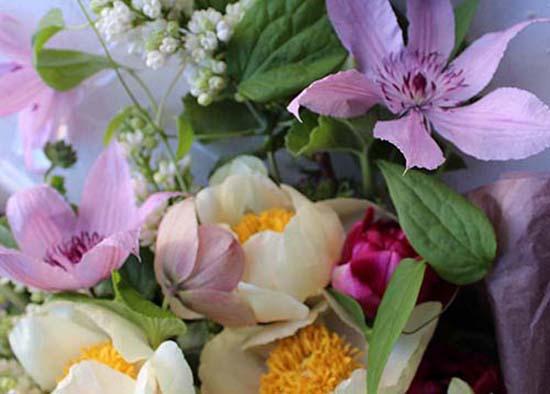 denise-fasanello-flowers