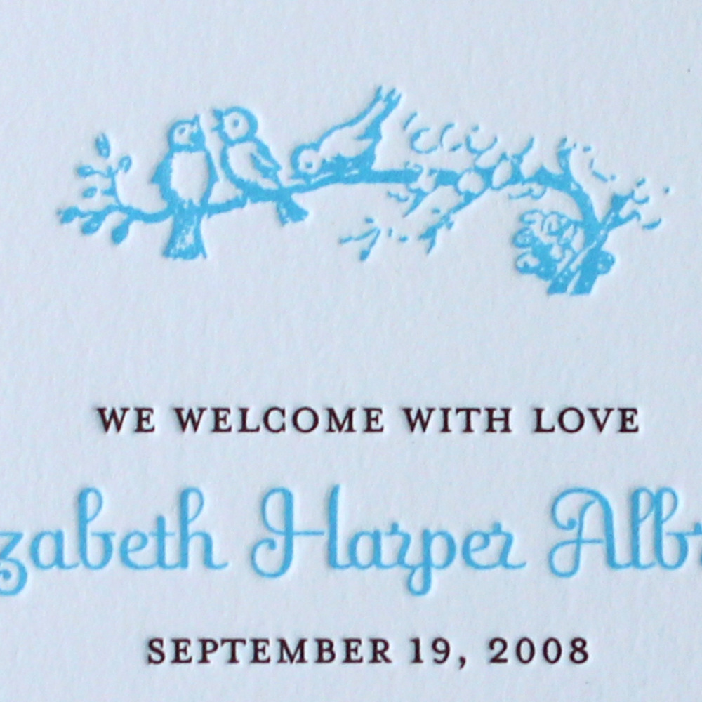 2-Blue-birds-on-branch-Letterpress-Baby-Announcement.jpg