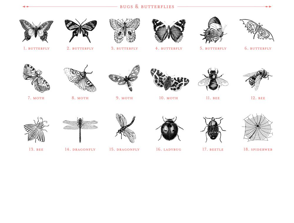 Image_Catalog_22.jpg