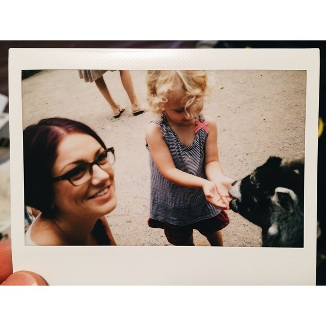 One more from the zoo in Elmvale #canada #elmvale #junglezoo #zoo #instax #fujifilm