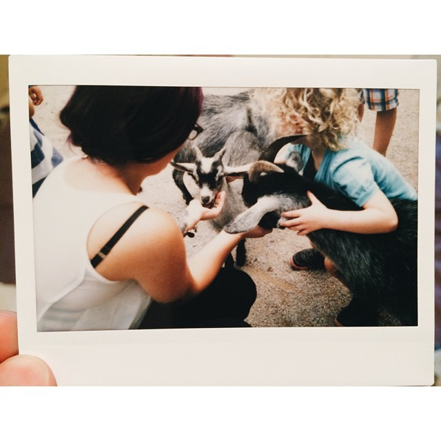 From the Elmvale Jungle Zoo the other day. #canada #elmvale #junglezoo #zoo #instax #fujifilm