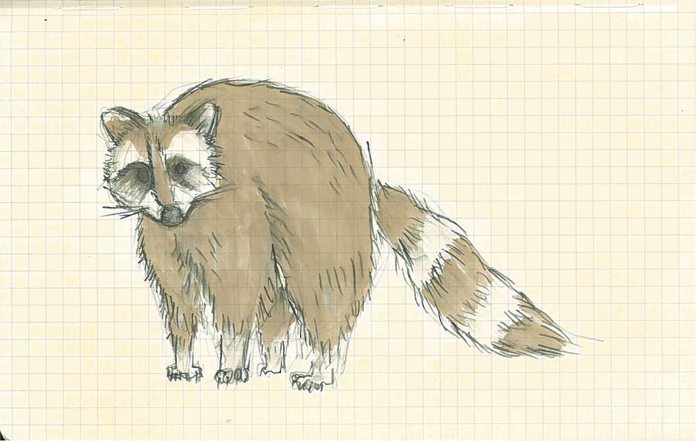 Sketch 006.jpg