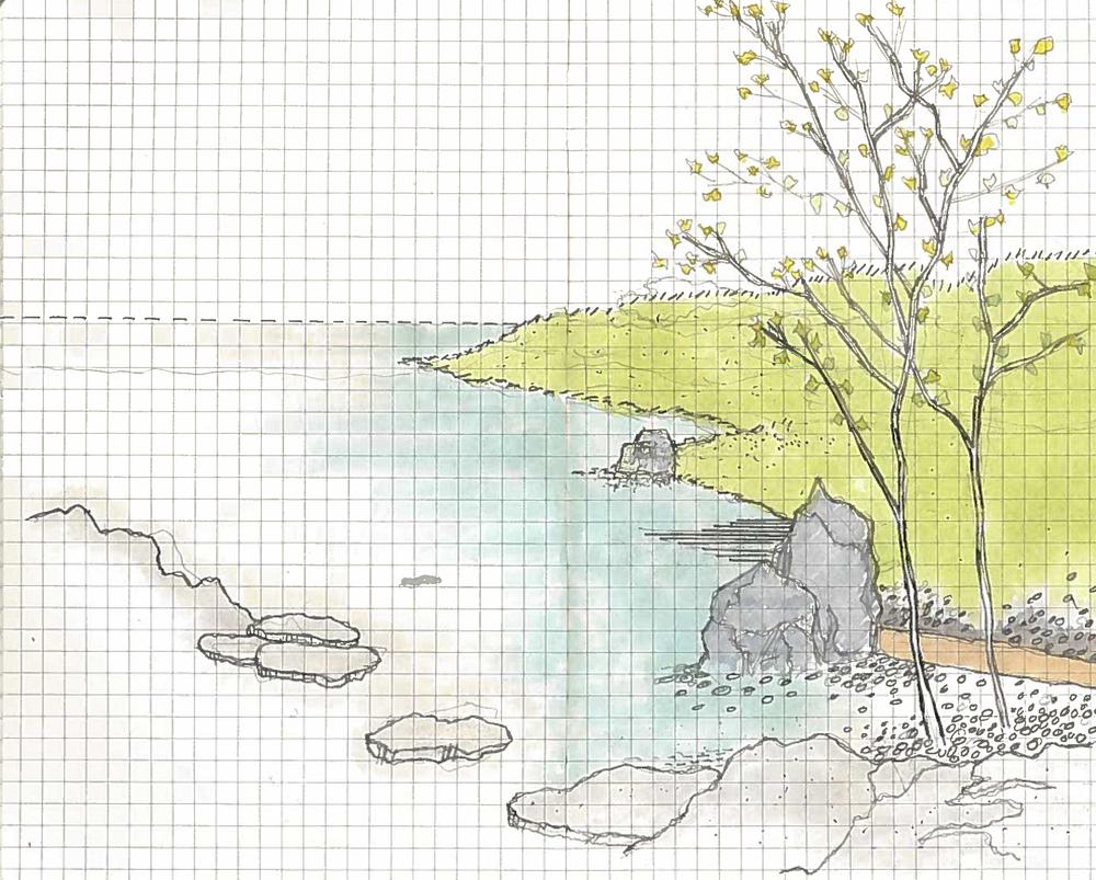 Trees & Landscape.jpg