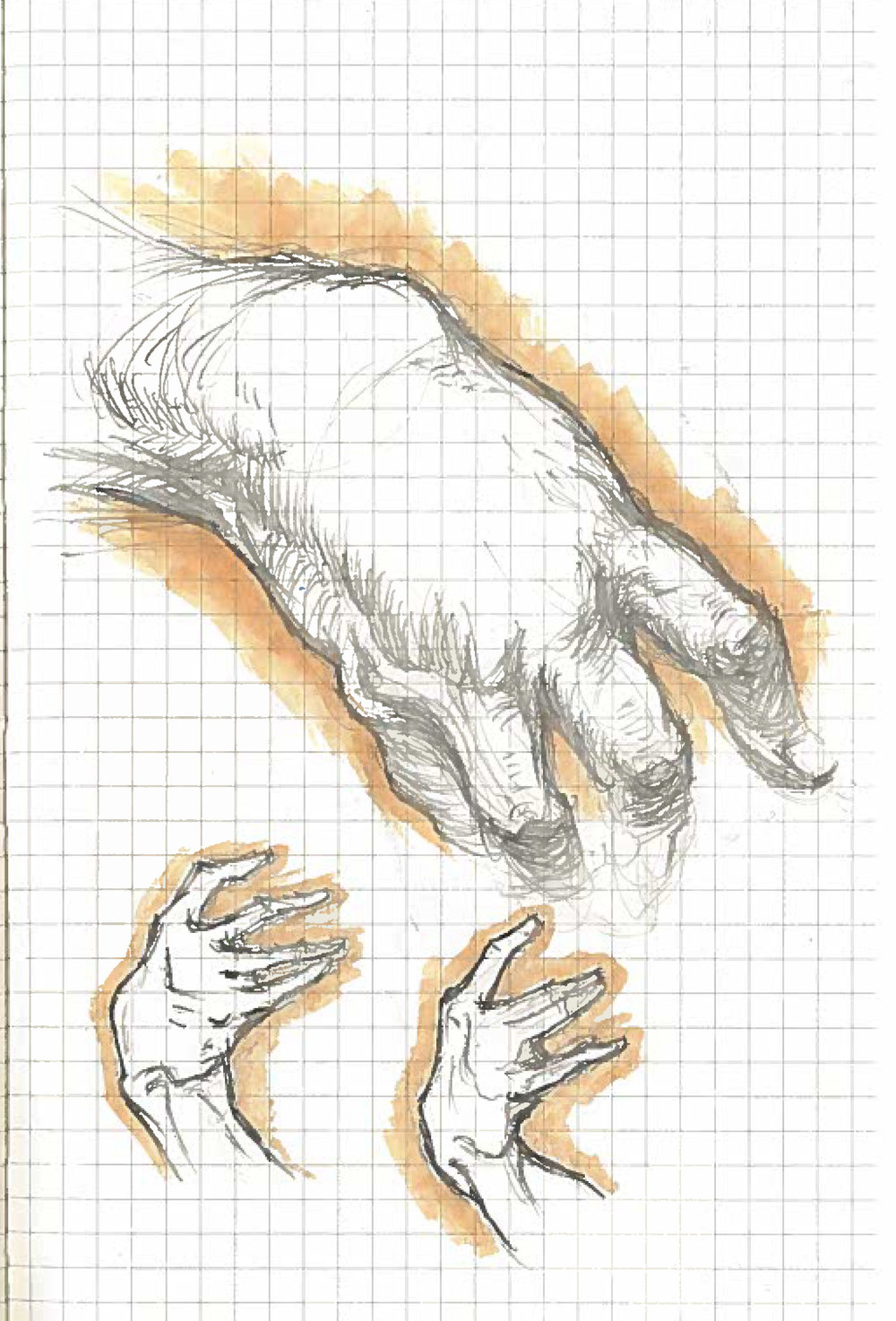 Hands 1_2016.jpg