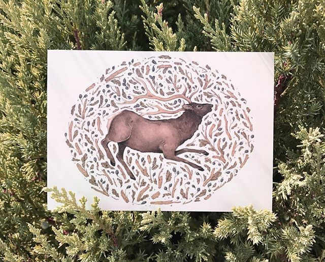 I'm in Oklahoma this week painting murals and having a wonderful time! 🌾 Here's a look at my Elk in Nature postcard, available at jessicaroux.bigcartel.com - all orders will ship once I'm back after Labor Day.