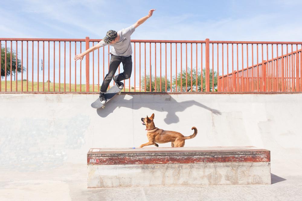 Justin Modica // Backside smith grind // Phoenix, AZ