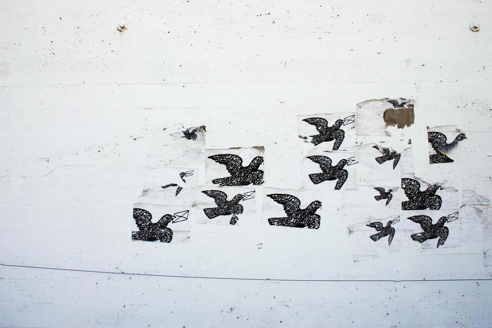 Forgotten Flock.jpg