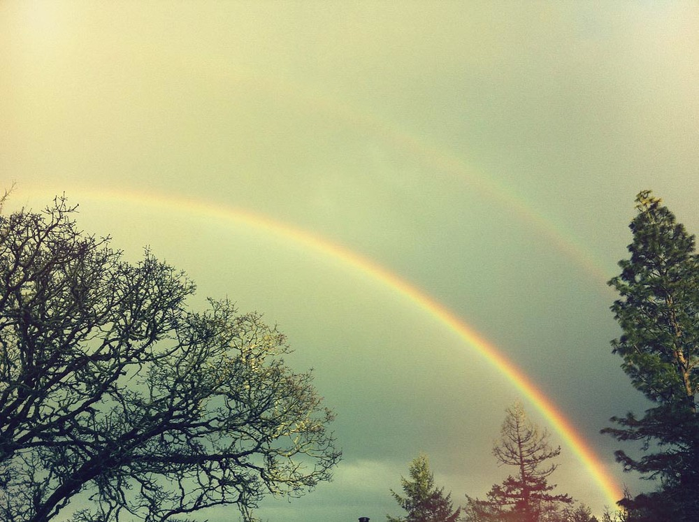 double rainbow all the way -1268x947 max .jpg