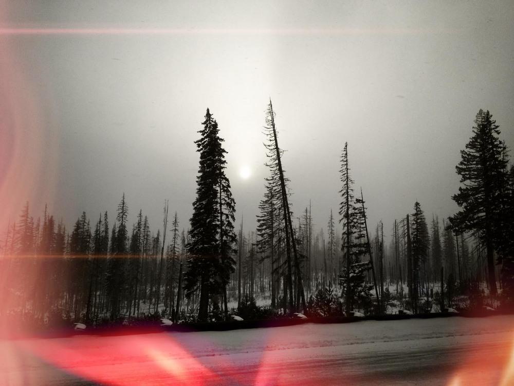 IMG_2557 - 2012-02-26 at 14-25-21.jpg