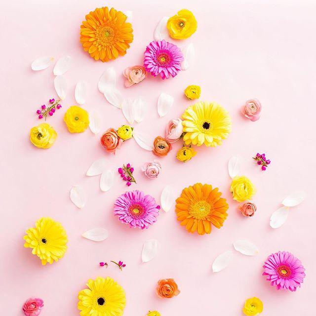 April showers bring May flowers. 💐 #britstagram
