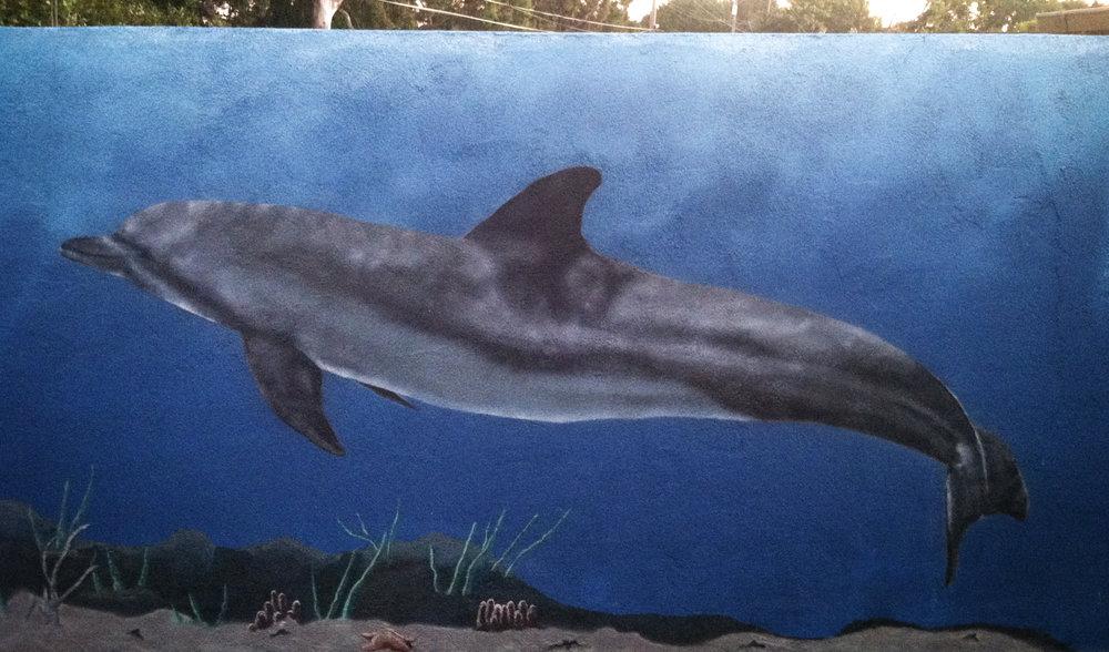 custom painting dolphin.jpg