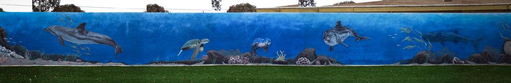 large mural ocean scene san francisco bay area.jpeg