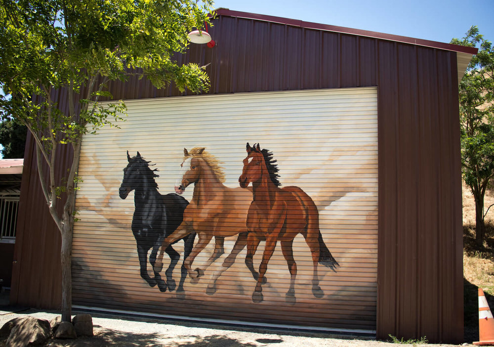 chris+horse+mural+web-4.jpg