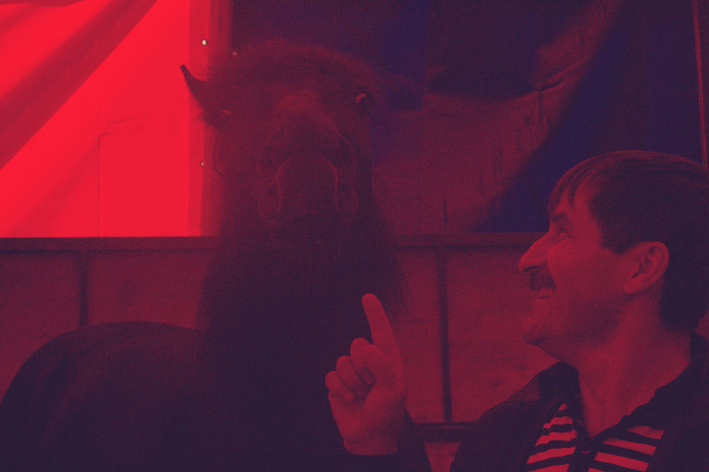 Oleg asegura que su caballo es tan inteligente quelee libros. Para las fotos, sin embargo, eligió poses menos estructuradas.