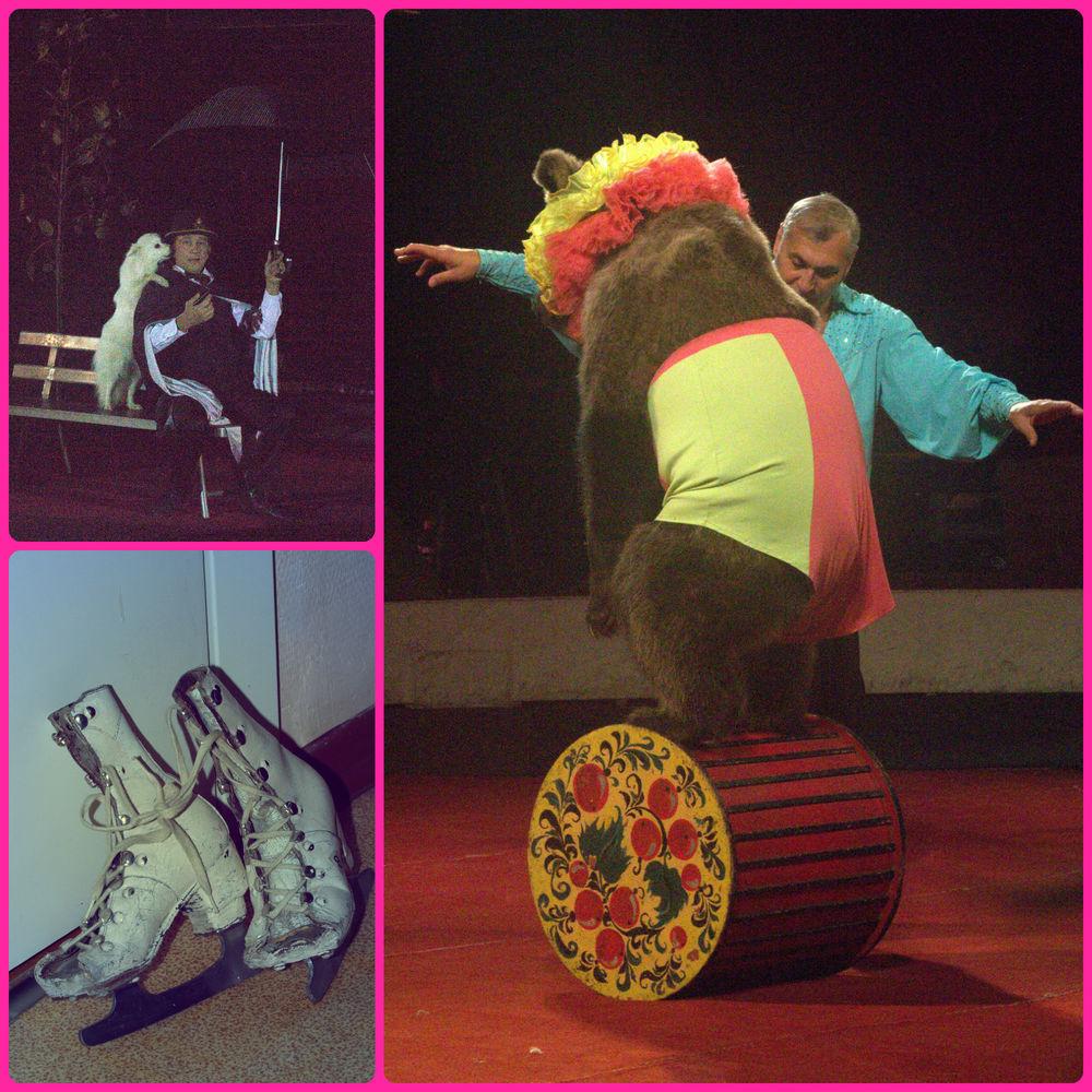 Cuando aparecen los caballos, los perros y, especialmente, la osa, los empleados del circo avisan a los espectadores de la primera fila que no pueden levantarse. Los patines forman parte de la colección del Museo del Circo y pertenecían a un mono.