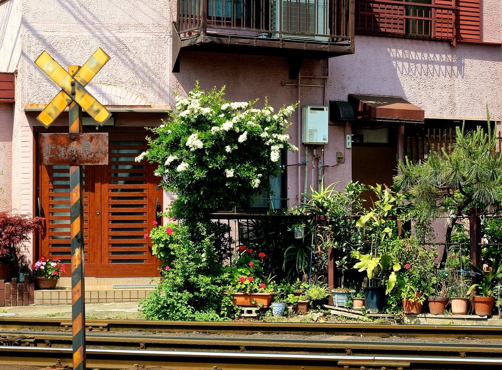 AL BORDE DE LA VÍA. Vecinos con poco margen de vereda, pero con unacceso al transporte envidiable. Tokyo, Japón - Mayo 2015