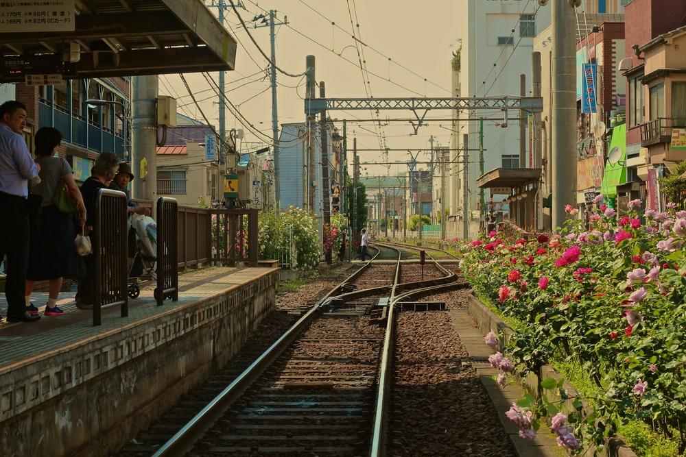 ESTACIÓN TERMINAL. El tranvía de la línea Arakawa es histórica. Algunos recomiendan hacer el recorrido sobre el carro, otros prefieren caminar al costado de sus vías. Yo hice mitad del camino sobre el tranvía y las tres cuartas partes restantes a pie. (No siempre es posible caminar precisamenteal lado de las vías, siendo necesario dar unas vueltas a la manzana extras:así,la segunda mitad se hizo más extensa que la primera.) Tokyo, Japón - Mayo 2015